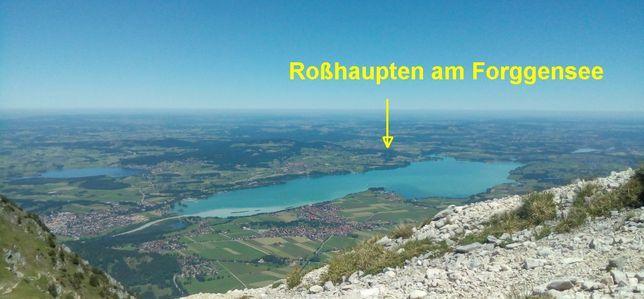 Blick vom Säuling auf den Forggensee und dahinter Roßhaupten